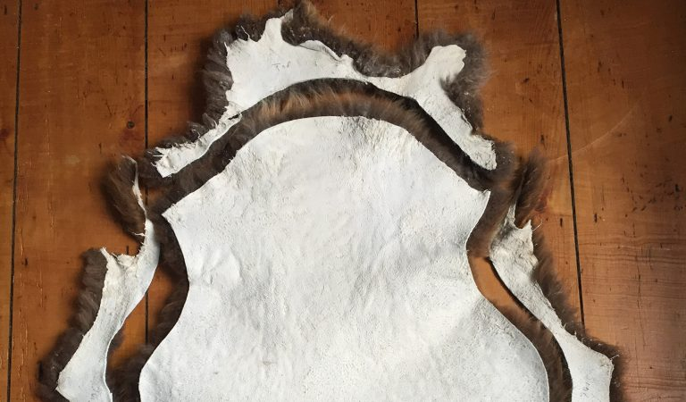 blog 2016 header trimmingsheepskins