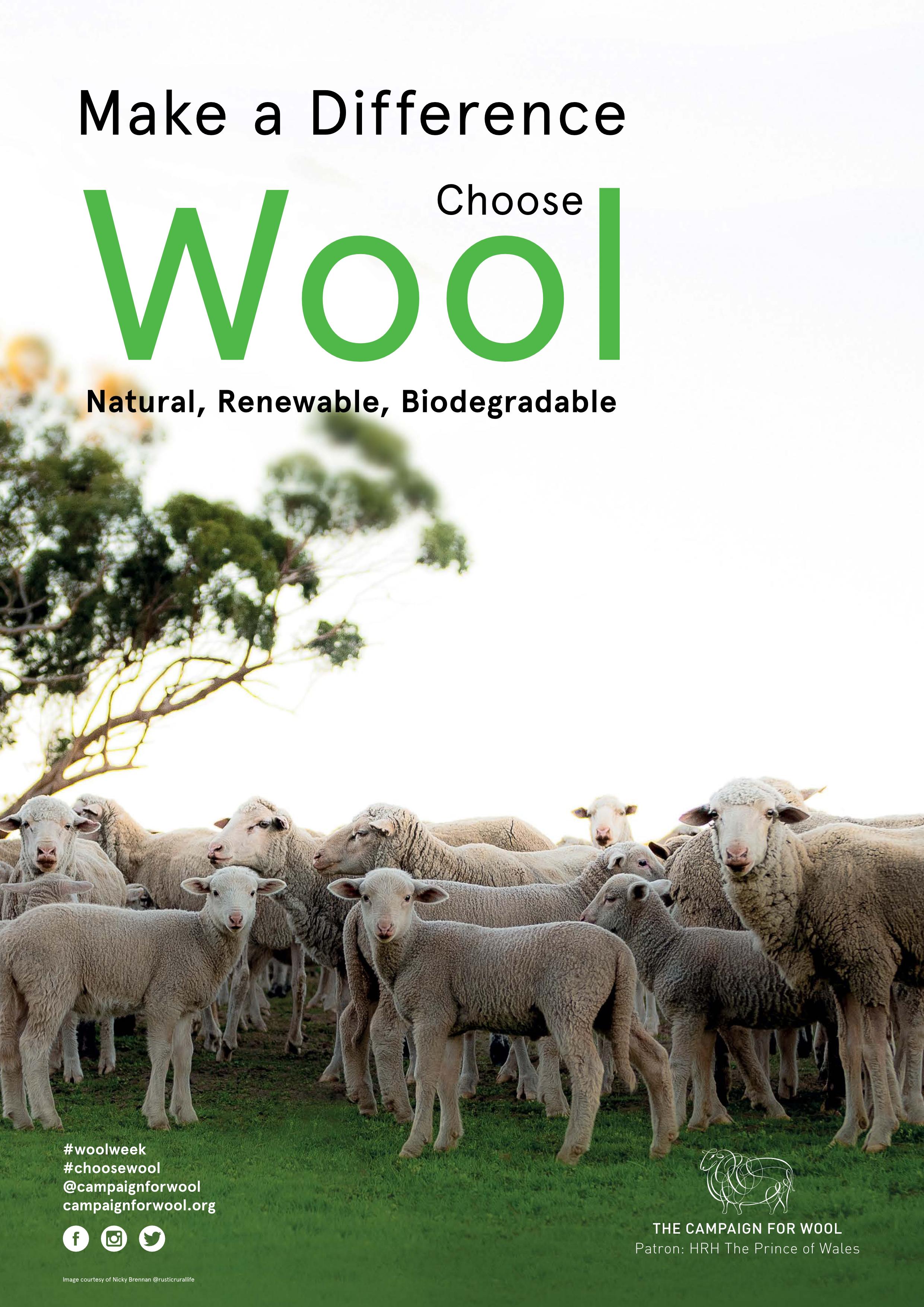 Wool Week flyer