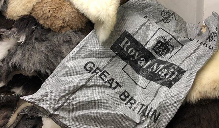 Royal Mail posting sack on some sheepskin rugs