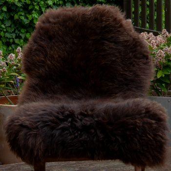 FB teddy bear chair