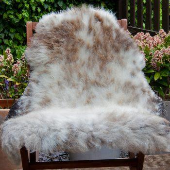 FB badgerface cross chair