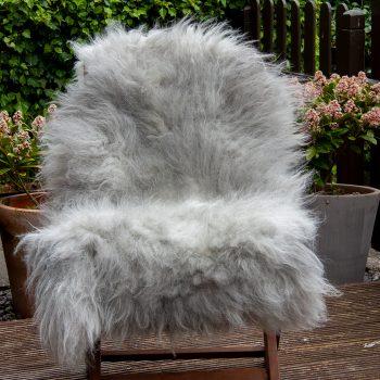 FB greyface chair