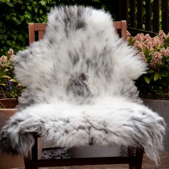 FB speckled thin chair