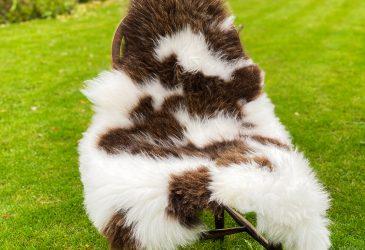 FB standard jacob chair