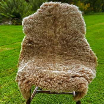 FB soay chair