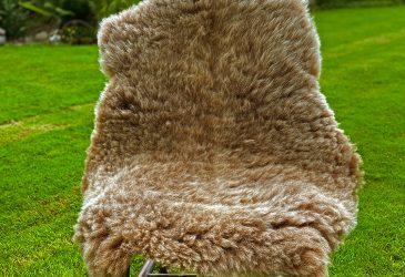 FB soay chair
